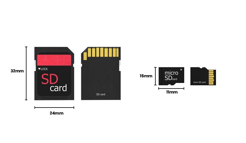 SD Card vs TF Card Size